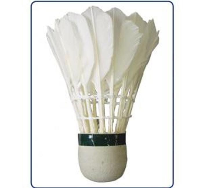Peteca Badminton